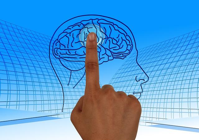 מצביעים על המוח - נלפ